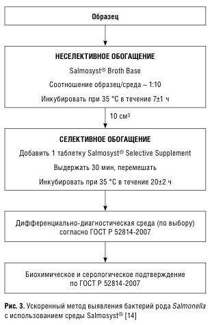 Методы выявления патогенных микроорганизмов с использованием иммунохроматографических экспресс тесто