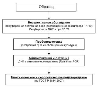 Тесто Методы с выявления использованием микроорганизмов патогенных иммунохроматографических экспресс there